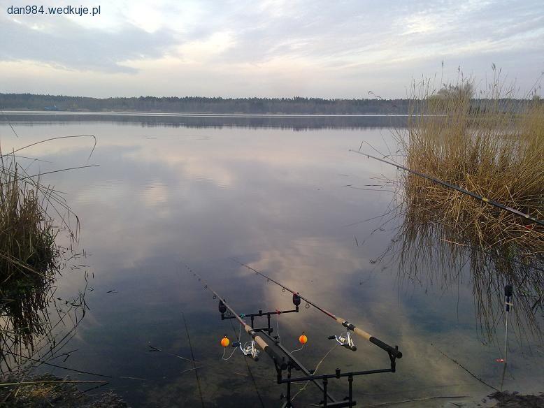 Forum w�dkarskie, �owiska forum, forum ryby - w�dkarstwo