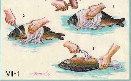 Patroszenie ryb - przepis na, zdj�cia, opinie
