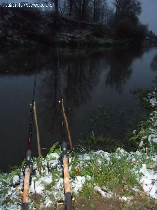 Jesieñ nad rzek± -  szczupaki, miêtusy i klenie- zdjêcia, foto galerie, fotki, zdjêcie