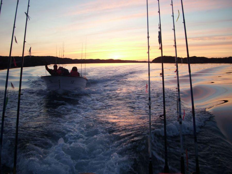 Norwegia - W�dkarstwo - Hitra - Wiosna - 2010 | w�dkowanie w, zdj�cia, opinie