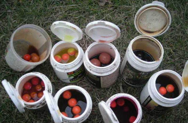 Karp w�dkarstwo - jak i czym przechytrzy� karpie | na rybach, zdj�cia, opinie
