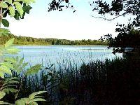 Jezioro D�bie (WYGNA�CZYCE)