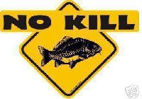 CATCH&RELEASE - NO KILL