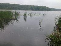 Podsumowanie roku 2012 na jeziorze Swarz�dzkim