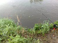 Rzeka Kamienna (Ostrowiec �wi�tokrzyski)