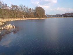 Jezioro Brzednia