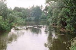 Rzeka Liwiec