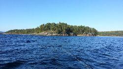 Powr�t na jezioro Foxen – bia�y �o� zamiast bia�ych myszek