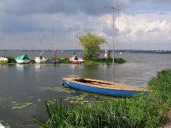Jeziorowe leszcze latem