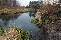 Rzeka Nida