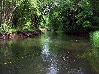 Rzeka Radunia