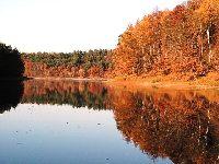 Jezioro Kopcze - wysychaj�ca ka�u�a