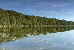 Rezerwacja jeziora Le�nego w dniu 11.10.2014