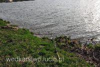 Majowy po��w leszczy i kr�pi na zalewie rzeszowskim