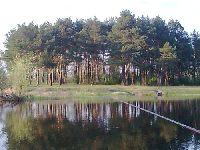 Staro�ecze Bugu w Szuminie w okolicach Wyszkowa