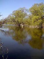 Rzeka Bug - Czum�w ko�o Hrubieszowa