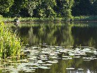 Jezioro �omno
