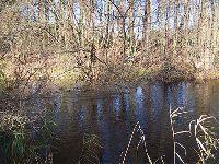 Rzeka Osusznica
