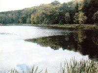 Jezioro Graniczne - Lubuskie