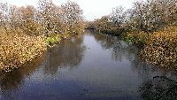 Rzeka Krzna dop�yw Bugu