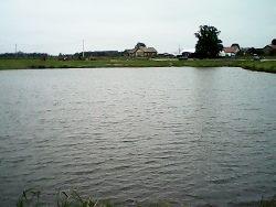 Kiersn�wek - Otapy