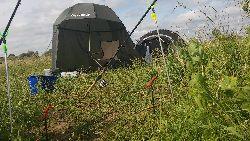 Linowa zasiadka na starorzeczu Bugu