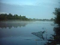 Starorzecze Wis�y w okolicy St�ycy - �acha st�ycka