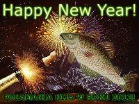 Wszystkiego Najlepszego w roku 2012!
