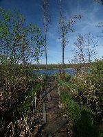 Jezioro Cycowe