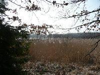 Jezioro Kurzyny