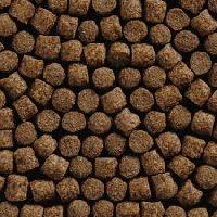 Przepis na pellet karpiowy