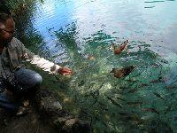 Piekna przyroda , o rybach troche inaczej...