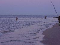 Morze Ba�tyckie/Surfcasting/Karwia-pla�owe