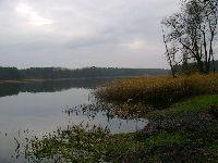 Jezioro K�pielowe (Czy�ykowo,Cisek)