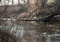 G�rny odcinek rzeki S�upi