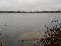 Jezioro S�one we wsi Chutcze, pow. che�mski.