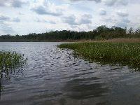Jezioro Liwno (Zab�r Du�y)