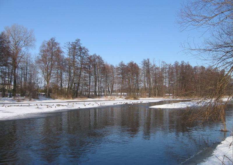 Pstr�g potokowy – wkr�tce koniec okresu ochronnego | w�dki zestawy, zdj�cia, opinie