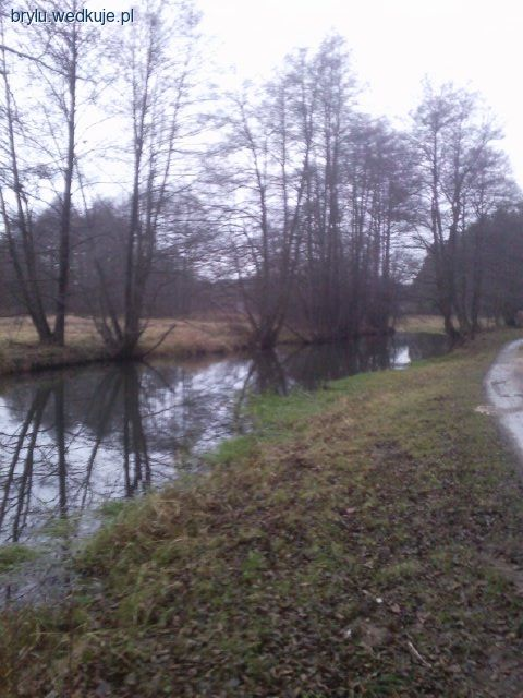Wierna Rzeka - w�dkarska przysta� - wyprawy w�darskie, zdj�cia, opinie