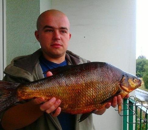 leszcz 63cm 3,20kg Dzier¿no Du¿e Rzeczyce k/GLIWIC