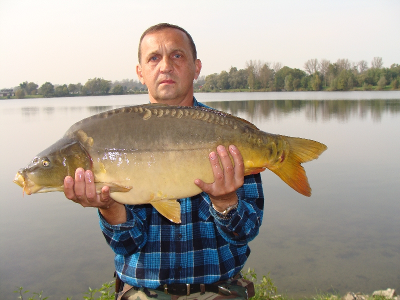 Karp 73 cm 7,5 kg  z jeziora Kruki (A).
