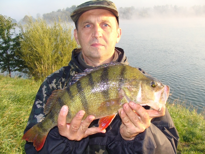 Oko�  45 cm 1,35 kg z jeziora Kruki.